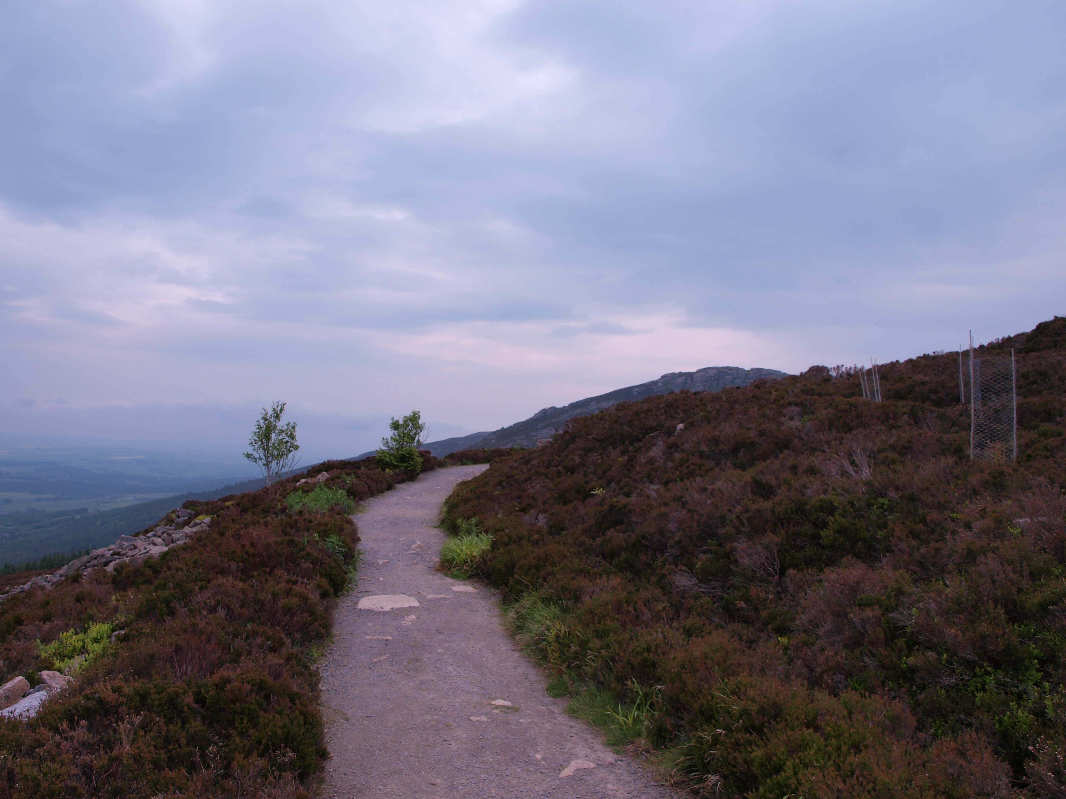 Walking on Bennachie