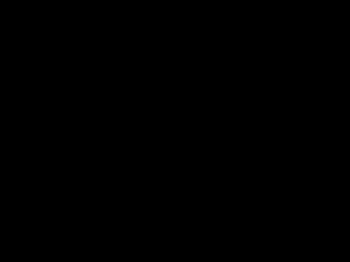 Blank slide