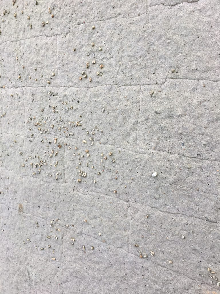 a white wall with some pebbles stuck in the mortar