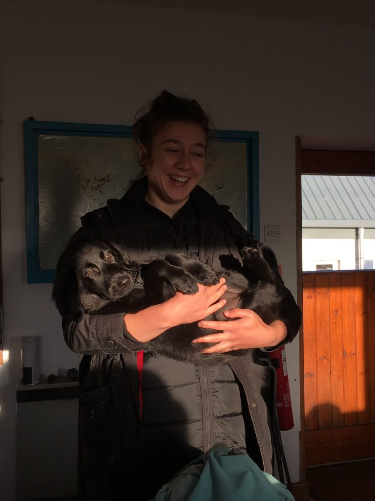 a girl in a black coat cradles a black dog in a ray of sunlight