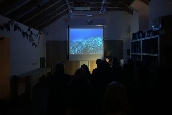 Borbála Soós presents as part of SSW's Public Talks Series in 2020